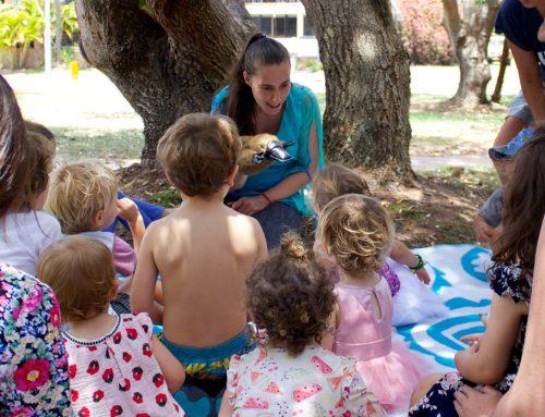 Play Tunes Singing Dancing Preschooler Fun